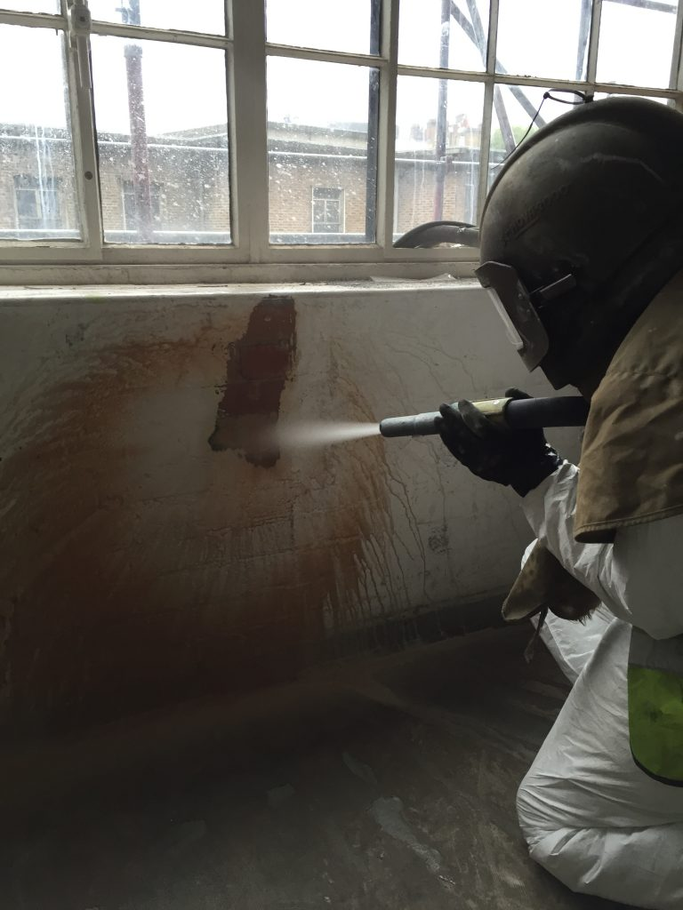 Herbal House Surface Cleaning and Lead Paint Removal